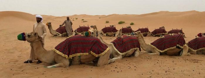 Hameem Desert is one of Dmitry'in Beğendiği Mekanlar.
