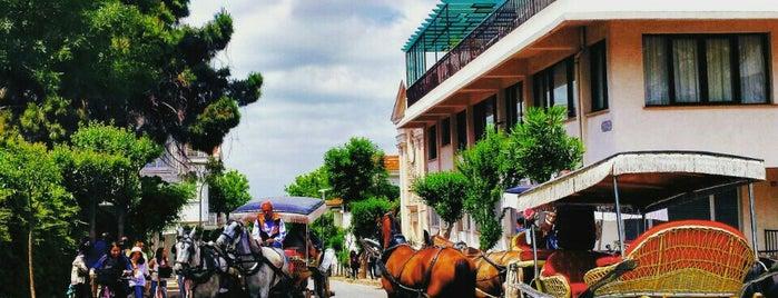 Büyükada is one of Istanbul.