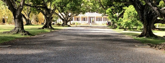 Château Labourdonnais is one of Mauritius. Places you must visit.