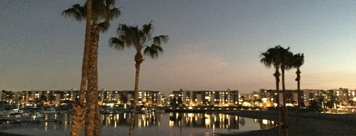 Marina del Rey is one of Locais curtidos por Danyel.