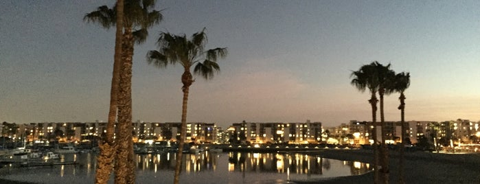 Marina del Rey is one of สถานที่ที่ Danyel ถูกใจ.