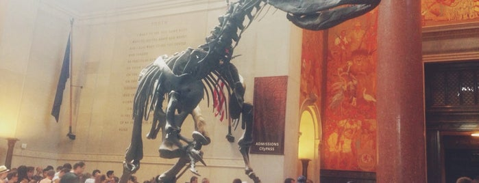 American Museum of Natural History is one of New York.