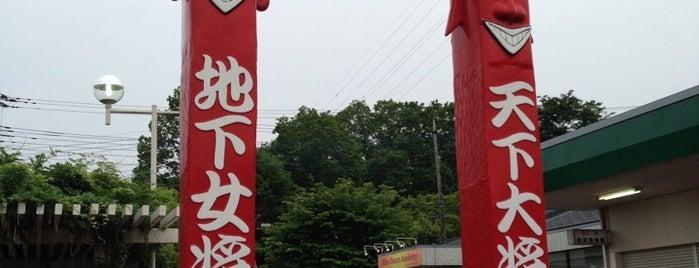 朝採れファーム高麗郷 is one of Nearby.