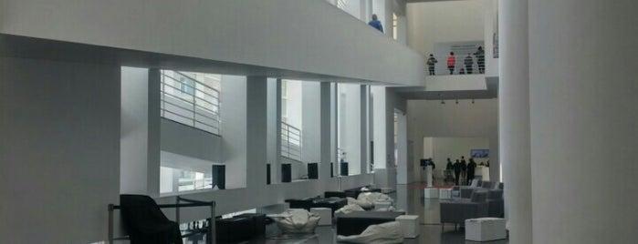 Museu d'Art Contemporani de Barcelona (MACBA) is one of #myhints4Barcelona.
