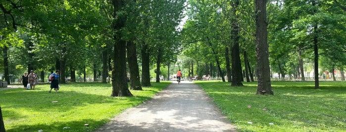 Палевский сад is one of Места для онлайн трансляций.