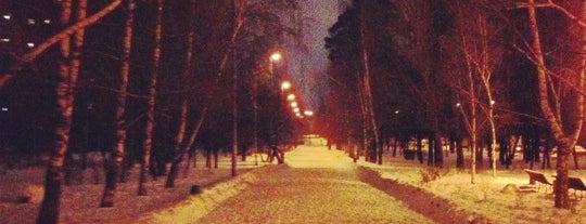 Красная дорожка is one of Москва, Классные заведения насвежемвоздухе.