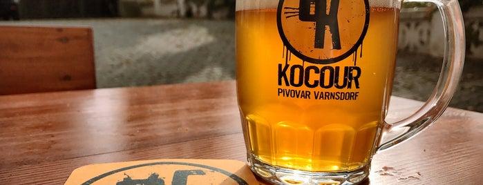 Pivnice U Kocoura is one of Kam v Brně na pivo.