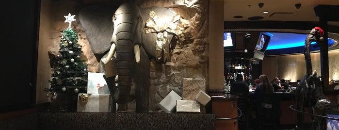 Elephant Bar is one of Orte, die Peter gefallen.