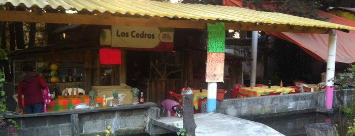 Los Cedros is one of Posti che sono piaciuti a Liliana.