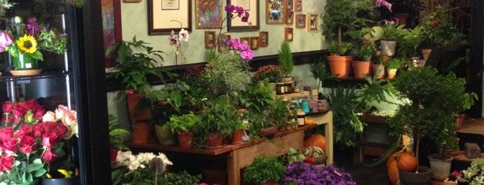 Halsted Flowers is one of Shoppeeeeeeeng.