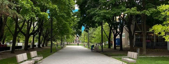 Grange Park is one of Toronto.