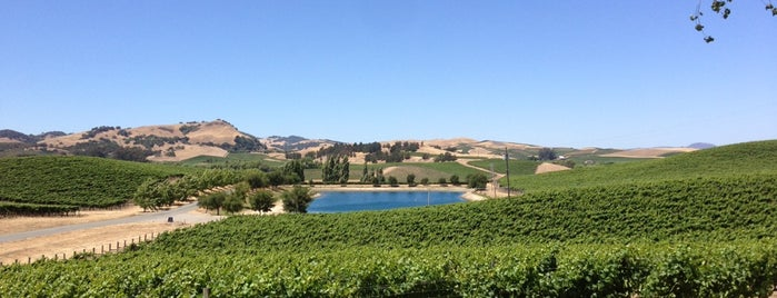 Cuvaison Estate Wines is one of Carneros Wineries.