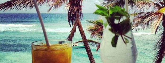 Atlantis Restaurant is one of Best Rum Punch in Barbados.