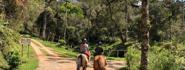 Aventura no Rancho is one of Esta é minha Campos do Jordão.