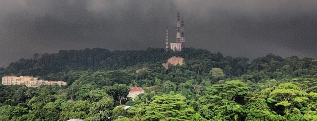 Bukit Timah Hill is one of Singapore.
