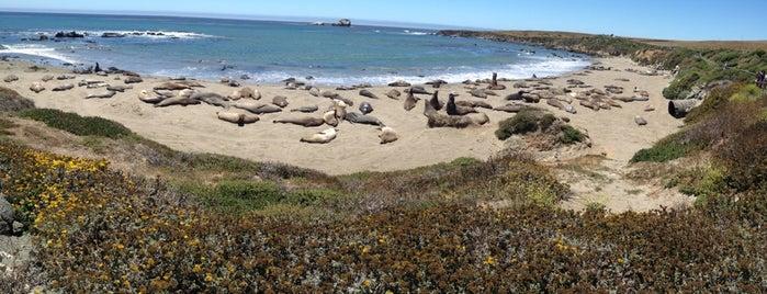 Morro Rock State Natural Preserve (Morro Rock) is one of San Luis Obispo Guide.