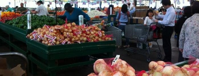 Joe Randazzo's Fruit & Vegetable Market is one of Locais curtidos por Alexandra Laxmi.