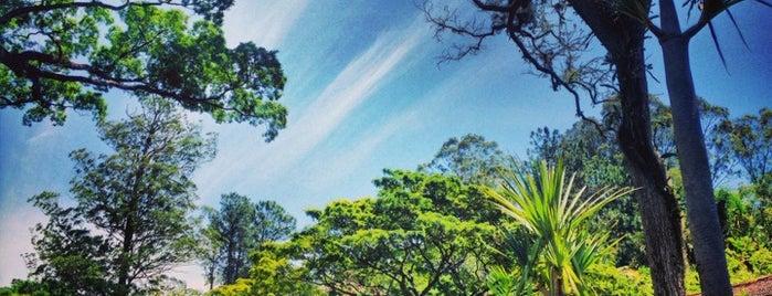 Floresta Estadual Edmundo Navarro de Andrade is one of Rio claro.