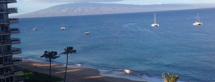 The Whaler On Kaanapali Beach is one of Pablo'nun Beğendiği Mekanlar.