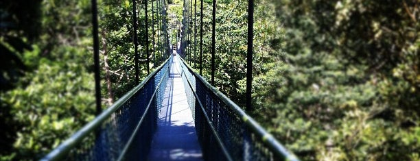 TreeTop Walk is one of Orte, die Chuck gefallen.
