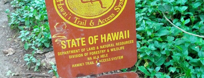 Maunawili Falls Trail is one of Oahu: The Gathering Place.