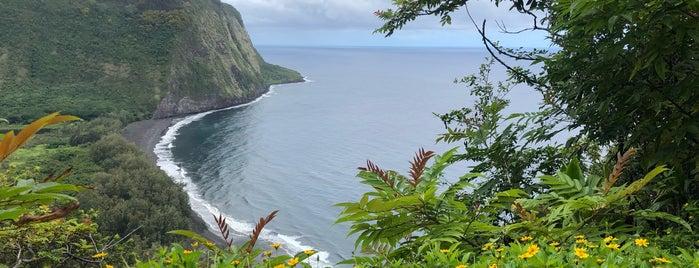Waipio Lookout is one of My Big Island.