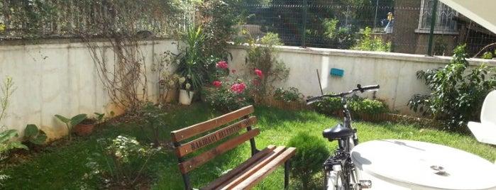 Remzi'nin Bahçesi is one of Orte, die Remzi gefallen.