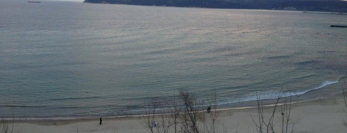 Trakata Beach is one of Varna's best.