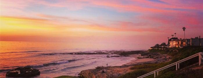 Windansea Beach is one of James : понравившиеся места.