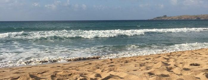 The Ritz-Carlton Beach is one of Posti che sono piaciuti a Amanda.