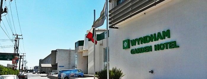 Wyndham Garden Celaya is one of Locais curtidos por Felipe.