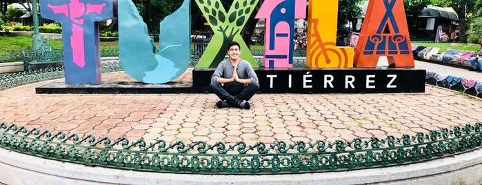 Parque de la Marimba is one of Jorgeさんのお気に入りスポット.