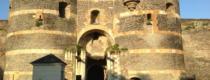 Château d'Angers is one of Posti che sono piaciuti a Deniz.