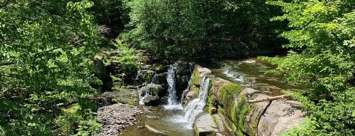 Woodstock Waterfall Park is one of Orte, die Gabbie gefallen.