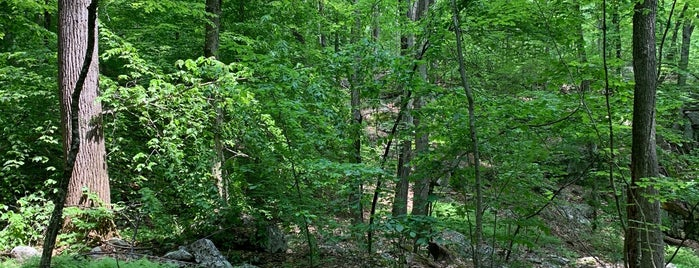 Devil's Den Preserve is one of Lugares guardados de Scott.