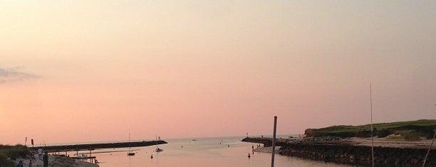 Sesuit Harbor is one of #OneSmithTobindThem.