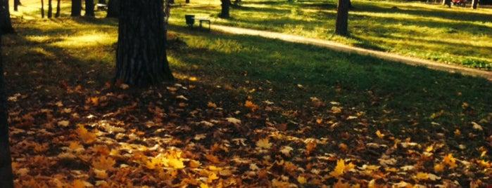 Заречный Парк is one of Locais curtidos por Евгения.