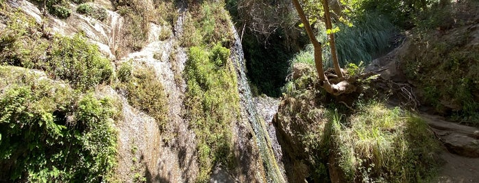 Escondido falls and hike is one of Around home.