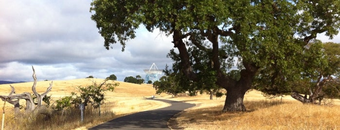 Stanford Dish Trail is one of My Little Corner of the World.