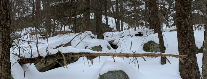 Awosting Falls is one of Hudson.