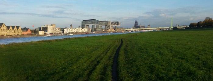 Rheinauhafen is one of Sven : понравившиеся места.