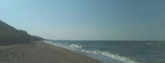 Ракушечный Пляж is one of สถานที่ที่ Денис ถูกใจ.