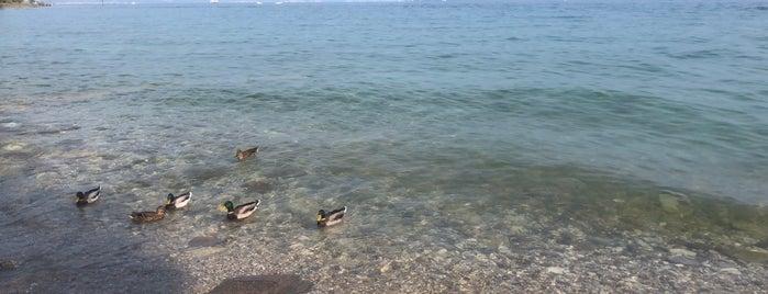 Lake Garda is one of Posti che sono piaciuti a Stefan.