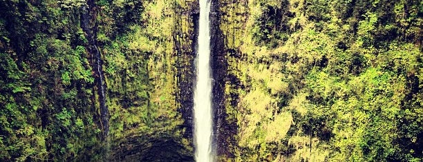Akaka Falls State Park is one of Hilo Trip.