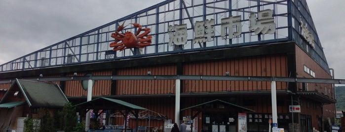 道の駅 舞鶴港とれとれセンター is one of Lugares favoritos de Shigeo.