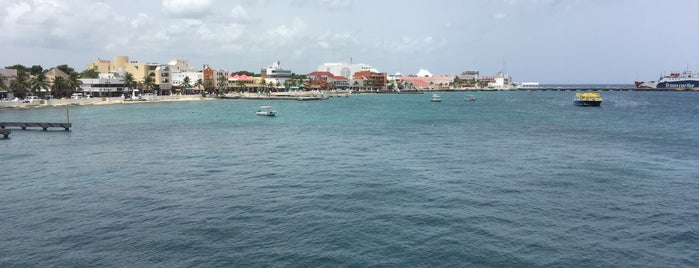 Cozumel is one of Stephraaaさんのお気に入りスポット.