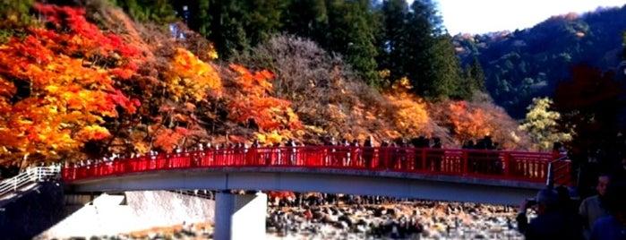 Korankei is one of Visit Nagoya.