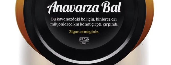 Anavarza Bal Genel Müdürlük is one of Posti che sono piaciuti a Mujdat.