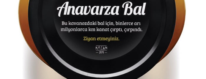 Anavarza Bal Genel Müdürlük is one of Orte, die Mujdat gefallen.