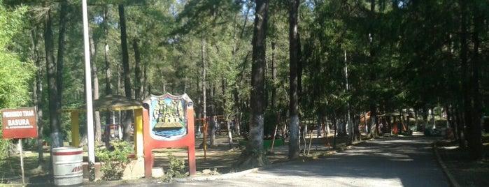 El Pinal Parque Ecológico is one of Teziu.